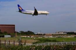 ☆ライダーさんが、成田国際空港で撮影した中国郵政航空 737-81Q(BCF)の航空フォト(飛行機 写真・画像)