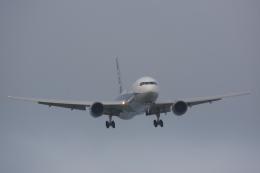 全日空 Boeing 767-300 (JA8290)  航空フォト   by 元青森人さん  撮影2012年07月09日%s
