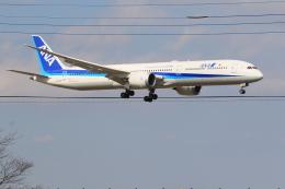 flyskyさんが、成田国際空港で撮影した全日空 787-10の航空フォト(飛行機 写真・画像)