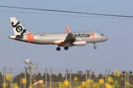 flyskyさんが、成田国際空港で撮影したジェットスター・ジャパン A320-232の航空フォト(飛行機 写真・画像)