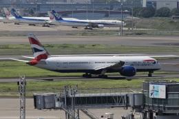 いんちゃんさんが、羽田空港で撮影したブリティッシュ・エアウェイズ 787-9の航空フォト(飛行機 写真・画像)