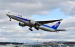 Dojalanaさんが、函館空港で撮影した全日空 777-281/ERの航空フォト(飛行機 写真・画像)