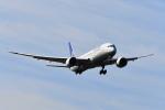 beimax55さんが、成田国際空港で撮影したユナイテッド航空 787-9の航空フォト(飛行機 写真・画像)
