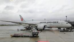 M.Tさんが、伊丹空港で撮影した日本航空 787-8 Dreamlinerの航空フォト(飛行機 写真・画像)