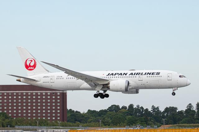 SGR RT 改さんが、成田国際空港で撮影した日本航空 787-8 Dreamlinerの航空フォト(飛行機 写真・画像)