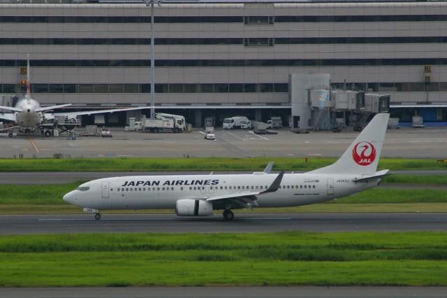 Smyth Newmanさんが、羽田空港で撮影した日本航空 737-846の航空フォト(飛行機 写真・画像)