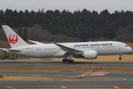 Smyth Newmanさんが、成田国際空港で撮影した日本航空 787-8 Dreamlinerの航空フォト(飛行機 写真・画像)
