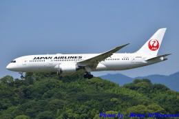 れんしさんが、福岡空港で撮影した日本航空 787-8 Dreamlinerの航空フォト(飛行機 写真・画像)