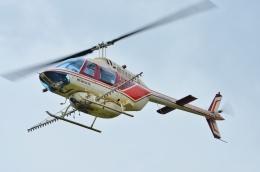 ブルーさんさんが、静岡ヘリポートで撮影したヘリサービス 206B-3 JetRanger IIIの航空フォト(飛行機 写真・画像)