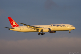 ぱん_くまさんが、羽田空港で撮影したターキッシュ・エアラインズ 787-9の航空フォト(飛行機 写真・画像)