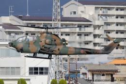 いおりさんが、八尾空港で撮影した陸上自衛隊 AH-1Sの航空フォト(飛行機 写真・画像)