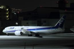 いんちゃんさんが、羽田空港で撮影した全日空 787-9の航空フォト(飛行機 写真・画像)