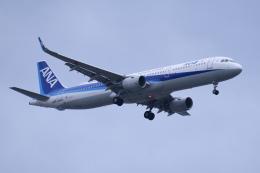 TOPAZ102さんが、伊丹空港で撮影した全日空 A321-211の航空フォト(飛行機 写真・画像)