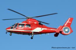 いおりさんが、名古屋飛行場で撮影した名古屋市消防航空隊 AS365N3 Dauphin 2の航空フォト(飛行機 写真・画像)