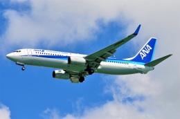 amagoさんが、那覇空港で撮影した全日空 737-881の航空フォト(飛行機 写真・画像)