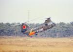 masahiさんが、習志野演習場で撮影した陸上自衛隊 KV-107II-4の航空フォト(飛行機 写真・画像)