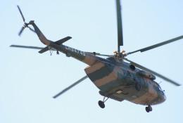 素快戦士さんが、BJTZで撮影した某国陸軍 第4陸航旅団 Mi-17-1Vの航空フォト(飛行機 写真・画像)