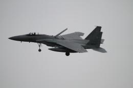 デウスーラ294さんが、小松空港で撮影した航空自衛隊 F-15J Eagleの航空フォト(飛行機 写真・画像)