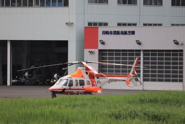 KAZFLYERさんが、東京ヘリポートで撮影した朝日航洋 430の航空フォト(飛行機 写真・画像)