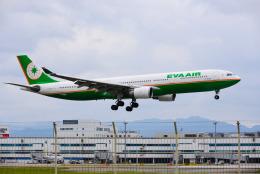 アングリー J バードさんが、福岡空港で撮影したエバー航空 A330-302の航空フォト(飛行機 写真・画像)
