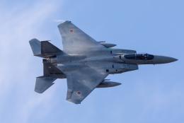 紫電さんが、新田原基地で撮影した航空自衛隊 F-15J Eagleの航空フォト(飛行機 写真・画像)