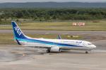 Y-Kenzoさんが、新千歳空港で撮影した全日空 737-881の航空フォト(飛行機 写真・画像)