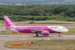 Y-Kenzoさんが、新千歳空港で撮影したピーチ A320-214の航空フォト(飛行機 写真・画像)