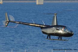 いおりさんが、大阪ヘリポートで撮影した日本法人所有 R44 IIの航空フォト(飛行機 写真・画像)