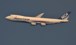 kenko.sさんが、成田国際空港で撮影した日本貨物航空 747-8KZF/SCDの航空フォト(飛行機 写真・画像)