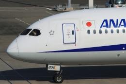Hiro-hiroさんが、羽田空港で撮影した全日空 787-9の航空フォト(飛行機 写真・画像)