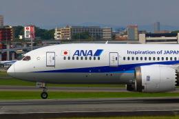 khideさんが、伊丹空港で撮影した全日空 787-8 Dreamlinerの航空フォト(飛行機 写真・画像)
