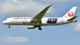 saoya_saodakeさんが、成田国際空港で撮影した日本航空 787-8 Dreamlinerの航空フォト(飛行機 写真・画像)
