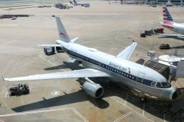 zettaishinさんが、ダラス・フォートワース国際空港で撮影したアメリカン航空 A319-112の航空フォト(飛行機 写真・画像)