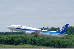 kitayocchiさんが、新千歳空港で撮影した全日空 737-8ALの航空フォト(飛行機 写真・画像)