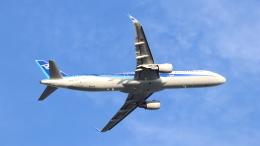 誘喜さんが、羽田空港で撮影した全日空 A321-211の航空フォト(飛行機 写真・画像)