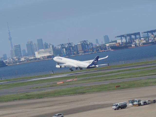 ねこねこちゃんさんが、羽田空港で撮影したルフトハンザドイツ航空 A340-313Xの航空フォト(飛行機 写真・画像)