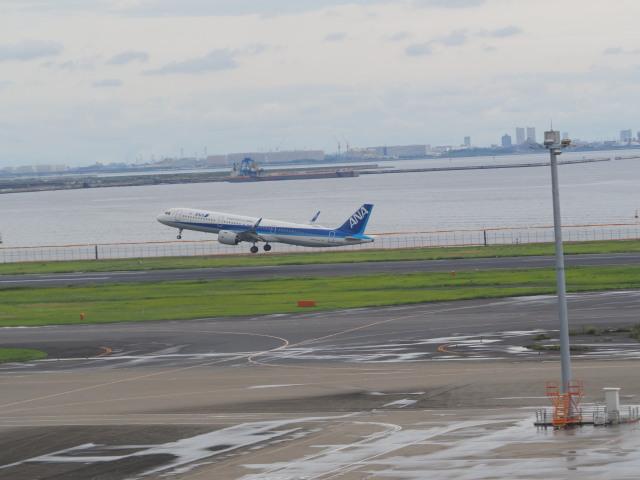 ねこねこちゃんさんが、羽田空港で撮影した全日空 A321-272Nの航空フォト(飛行機 写真・画像)
