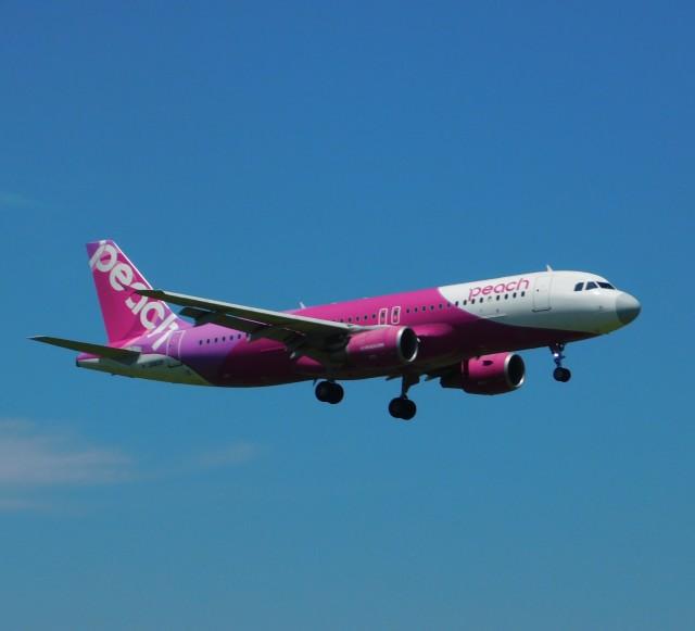 京成鐵@けいほんエアラインさんが、成田国際空港で撮影したピーチ A320-214の航空フォト(飛行機 写真・画像)