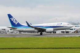 ワイエスさんが、鹿児島空港で撮影した全日空 737-781の航空フォト(飛行機 写真・画像)