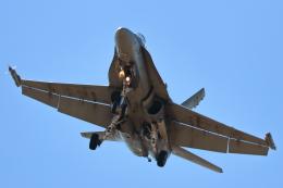 キャスバルさんが、ルーク空軍基地で撮影したカナダ軍 CF-18A Hornet(CF-188A)の航空フォト(飛行機 写真・画像)
