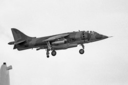 apphgさんが、名古屋飛行場で撮影したイギリス空軍 Harrierの航空フォト(飛行機 写真・画像)