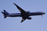 TOPAZ102さんが、伊丹空港で撮影した全日空 777-381/ERの航空フォト(飛行機 写真・画像)