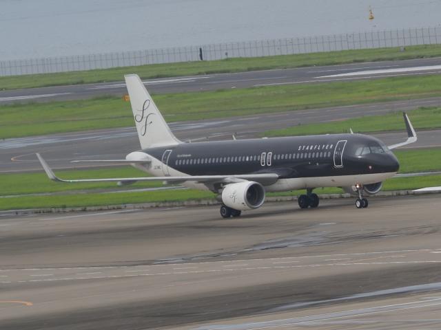 ねこねこちゃんさんが、羽田空港で撮影したスターフライヤー A320-214の航空フォト(飛行機 写真・画像)