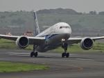 チャレンジャーさんが、羽田空港で撮影した全日空 787-8 Dreamlinerの航空フォト(飛行機 写真・画像)
