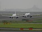 チャレンジャーさんが、羽田空港で撮影したAIR DO 737-781の航空フォト(飛行機 写真・画像)