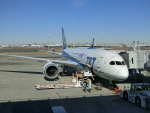 ヒロリンさんが、羽田空港で撮影した全日空 787-8 Dreamlinerの航空フォト(飛行機 写真・画像)