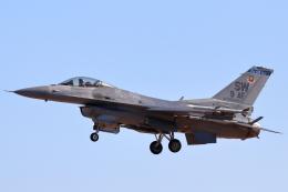 キャスバルさんが、ルーク空軍基地で撮影したアメリカ空軍 F-16CM-50-CF Fighting Falconの航空フォト(飛行機 写真・画像)