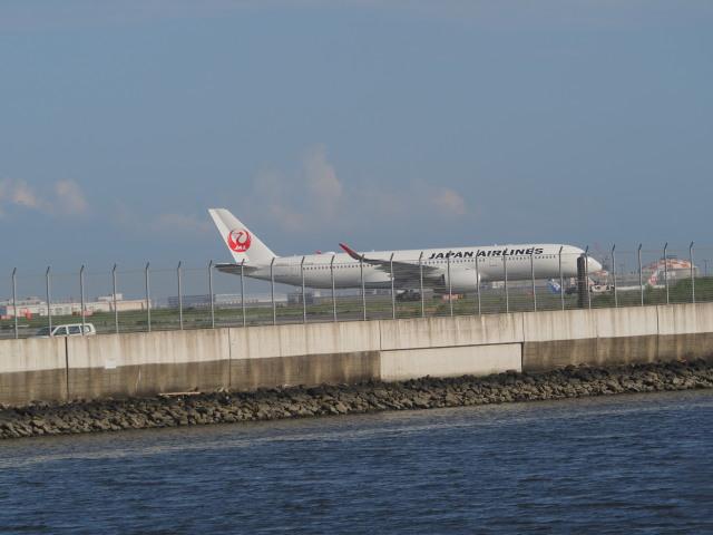 ねこねこちゃんさんが、羽田空港で撮影した日本航空 A350-941の航空フォト(飛行機 写真・画像)