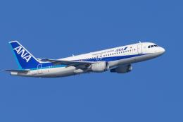 mameshibaさんが、羽田空港で撮影した全日空 A320-211の航空フォト(飛行機 写真・画像)