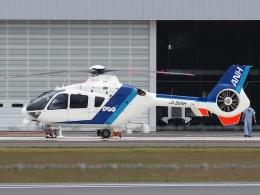 FT51ANさんが、奈多ヘリポートで撮影したオールニッポンヘリコプター EC135T2の航空フォト(飛行機 写真・画像)
